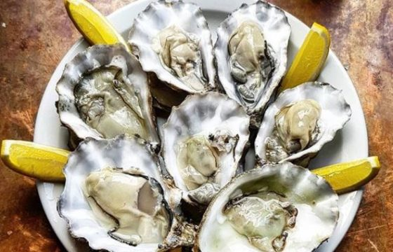 London Shellco Oyster Week Offer