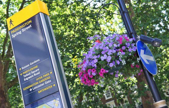 INVITE: Paddington in Bloom