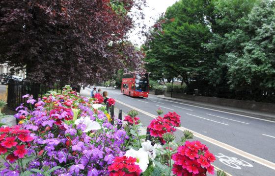 PaddingtonNow Annual Billing Leaflet 2020-2021