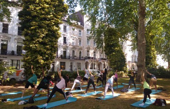 Autumnal Yoga in Norfolk Square Gardens