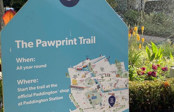 Sightsee Crowd Free: Enjoy Paddington