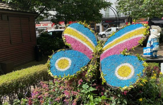 New Topiary Butterfly Garden in Norfolk Square